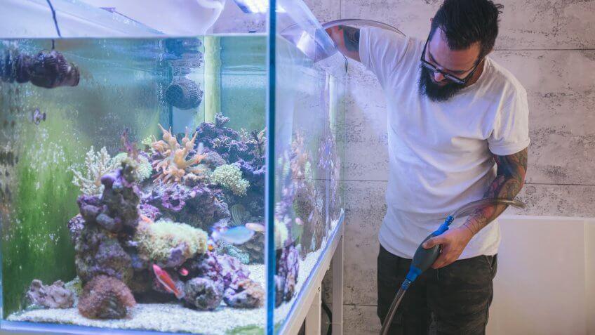 Bearded man cleaning reef tank.