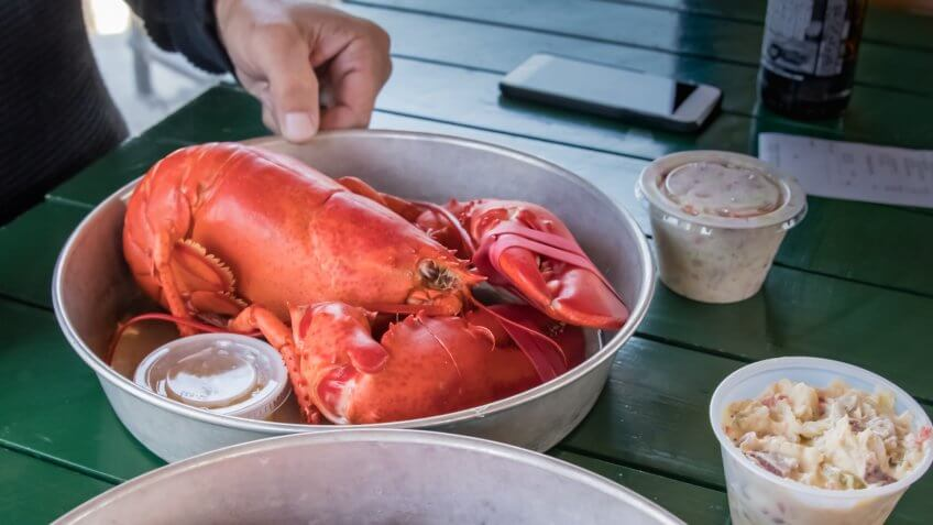 Very large steamed Maine Lobster, served in very casual restaurant.