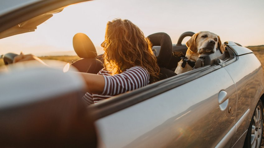 Free girl going to trip with her dog.