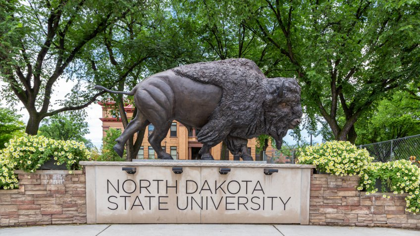 FARGO, ND/USA - JUNE 27, 2019: Bison Statue on the campus of the North Dakota State University.