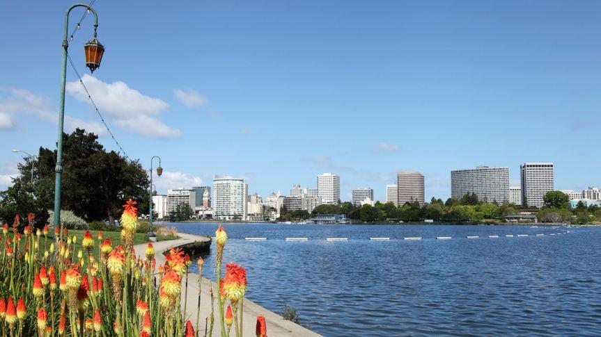A long-range shot of the Oakland skyline from the banks of Lake Merritt.