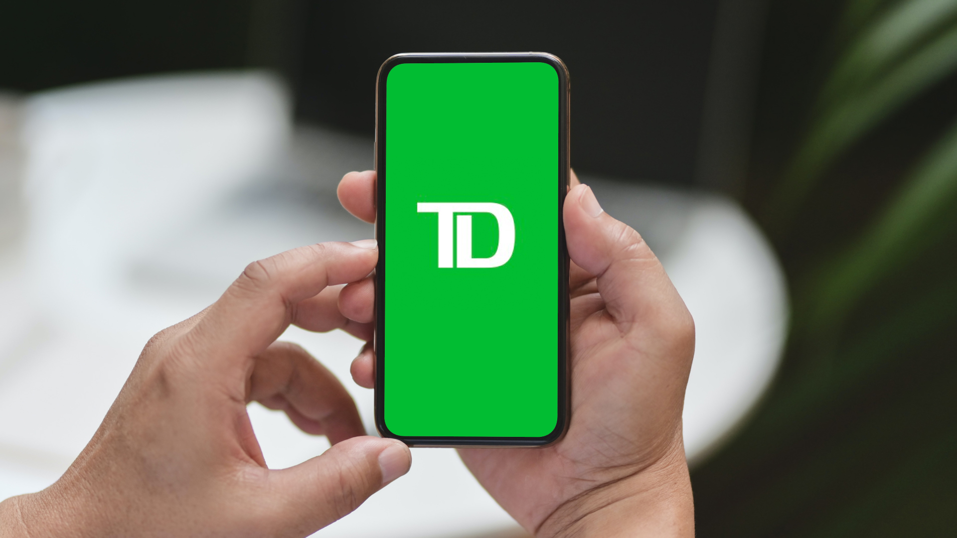 TD Ameritrade bank logo on smartphone.