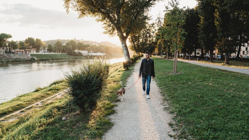 Young adult man walking with his dog near a river in the city.