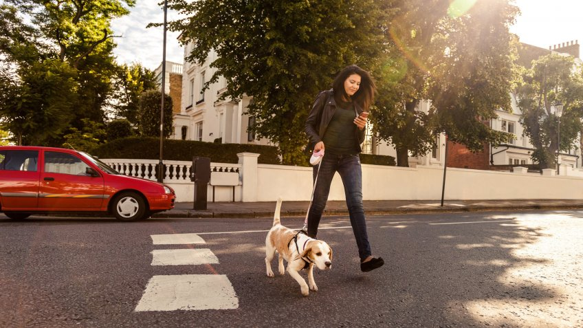 Happy woman walking with dog in early Sunday morning in London, Notting Hill.