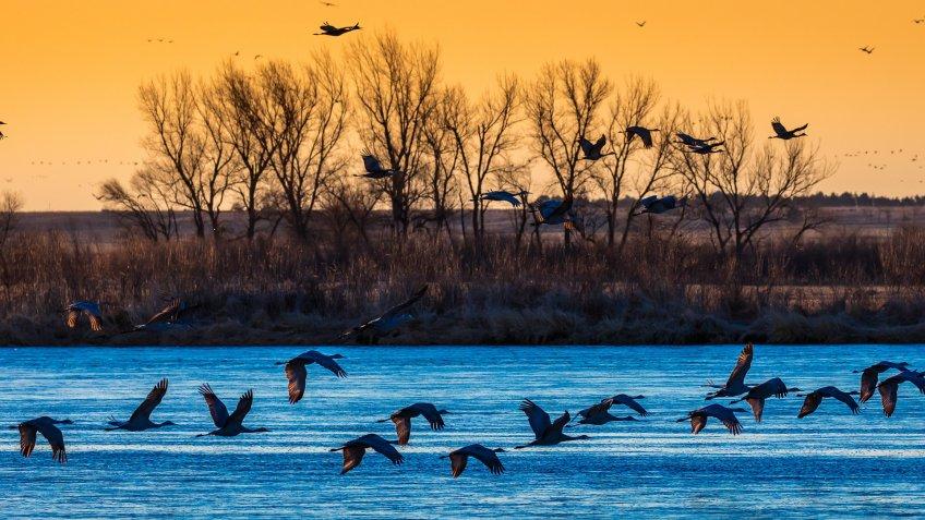 Grand Island Nebraska