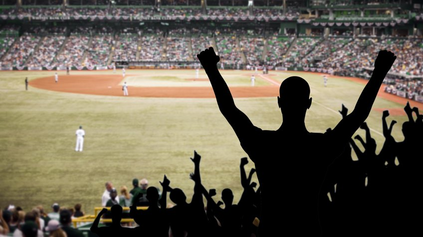 Fan celebrating a victory at a championship baseball game.