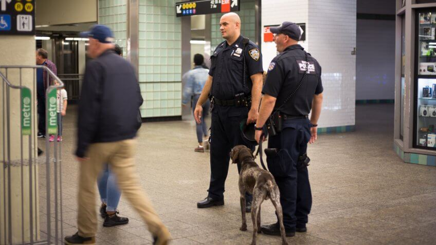 New York, NY: A pair of police officers with a guard dog  and commuters in the 42nd Street subway station.