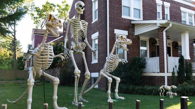 Mandatory Credit: Photo by Jacquelyn Martin/AP/Shutterstock (10954838b)Homeowner has gotten into the Halloween spirit, in Washington, with giant human and dinosaur skeleton decorationsDaily Life, Washington, United States - 14 Oct 2020.