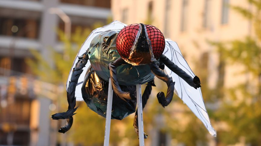 Mandatory Credit: Photo by JUSTIN CASTERLINE/EPA-EFE/Shutterstock (10971995ac)A giant fly is seen as people protest outside the Marion County Clerk's Office where US Vice President Mike Pence and Second Lady Karen Pence vote in the US presidential election in Indianapolis, Indiana, USA, 23 October 2020.