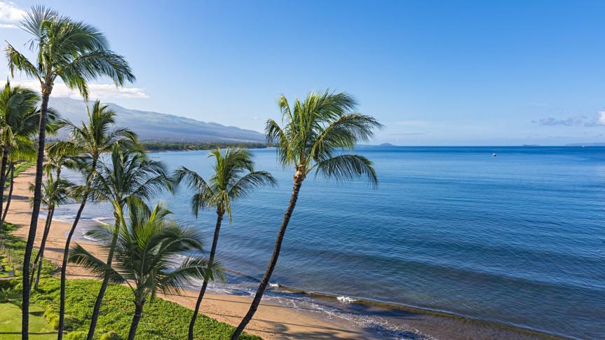 Beach and palms trees in the morning atSugar Beach Kihei Maui Hawaii USA.