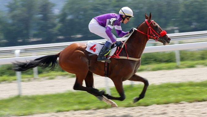 PYATIGORSK, RUSSIA -AUGUST 7: Jockey Rinat Hamidullin and bay akhal-teke stallion Demir-Tay race for the prize of Gundogara on August 7,2011 in Pyatigorsk, Caucasus, Russia.