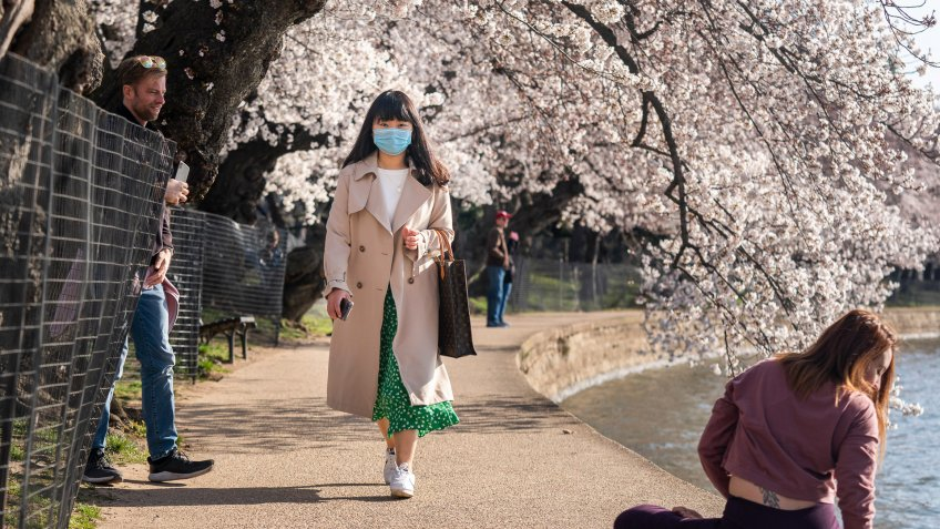 A woman wearing a face mask attends the start of the annual cherry blossom bloom on the Tidal Basin in Washington, DC, USA, 18 March 2020.