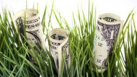 A Quick Guide to Certificate of Deposit Rollovers