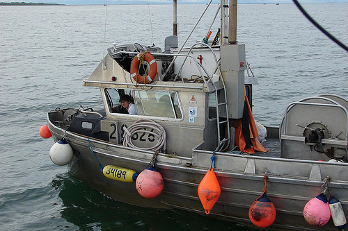 5 high paying careers that don 39 t require a college degree for Commercial fishing jobs