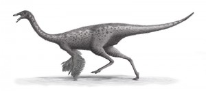 dinosaurs Gallimimus