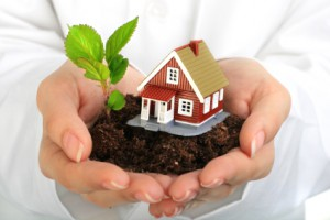 Spring Arcadia Mortgage