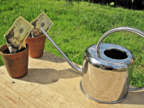 Grow Your Wealth With a Spring Bank Savings Account