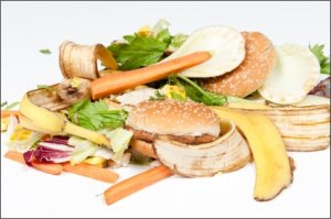 how much food is wasted every year