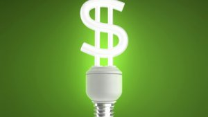 How to Save Electricity and Even Get Paid to Do It
