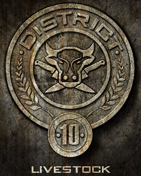 hunger games district 10