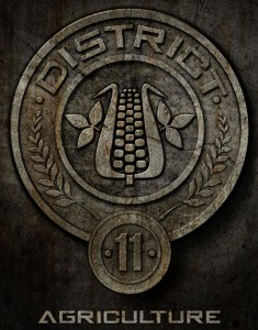 hunger games district 11
