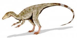 jurassic park 3D - Compsognathus