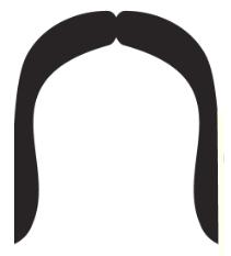 movember mustache_horseshoe