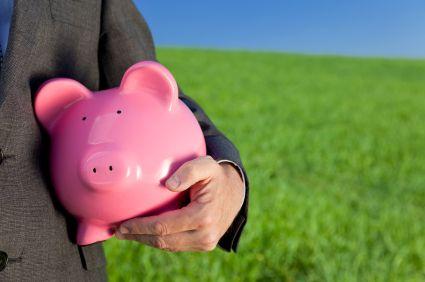 Green Investment Pink Piggy Bank